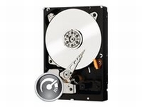 WD Black WD1003FZEX - Hard drive - 1 TB - internal - 3.5
